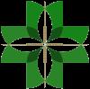 Dr Yin Chinese Medicine